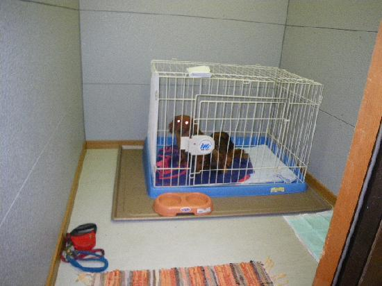 Bansuitei Ikoiso : プレハブのペット用の部屋