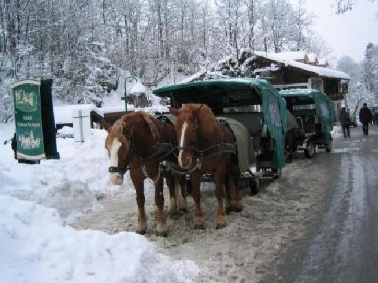Hohenschwangau, เยอรมนี: 馬車