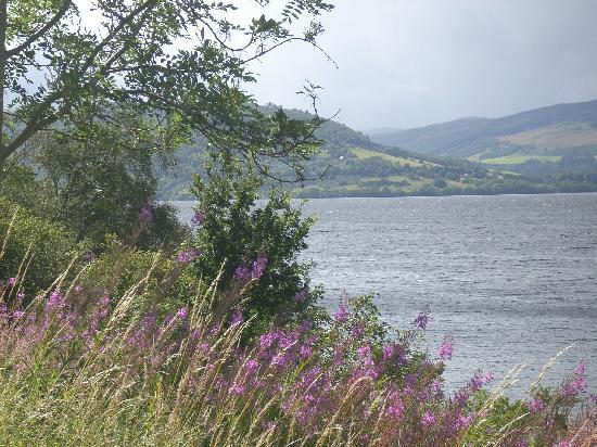 Foyers Bay Country House: View of Loch Ness