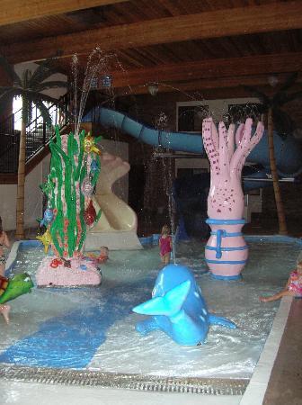 Comfort Inn: Water Park