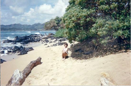 ปัวปู, ฮาวาย: Barb at beach Kauai,Hawaii 1989