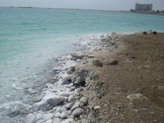 เปตรา/วาดีมูซา, จอร์แดน: Israele , Mar Morto
