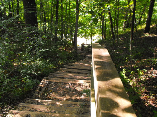 Apple River Canyon State Park: Stairs down from the camp site