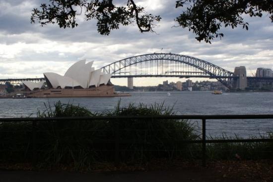 สะพานซิดนีย์ฮาเบอร์: Opera House e Harbour Bridge da Mrs Macquires Point