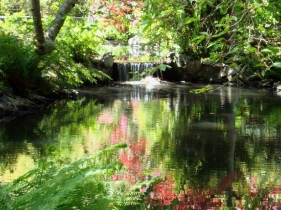วิคตอเรีย, แคนาดา: One of the many great parcs in Victoria