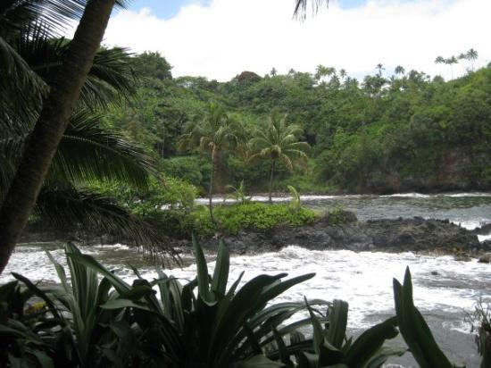 Ocean View Picture Of Hawaii Tropical Botanical Garden Papaikou Tripadvisor