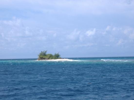 Shaviyani Atoll: Maldivas, agosto 2008 (isla solitaria)