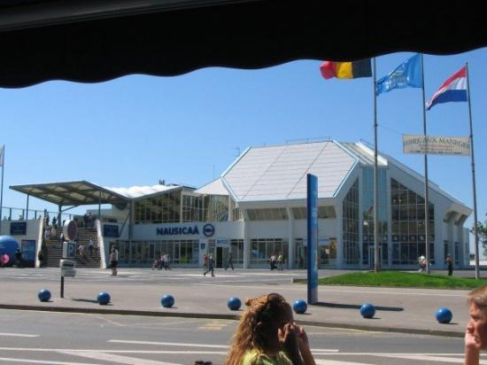 Boulogne-sur-Mer, NAUSICAA  (qui aurait pu en douter?!)