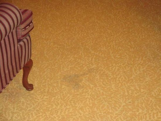 Country Inn & Suites By Carlson, Helen: Stain on floor