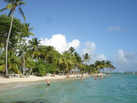 Sainte-Anne, กวาเดอลูป: Une autre vue de la plage de la Caravelle