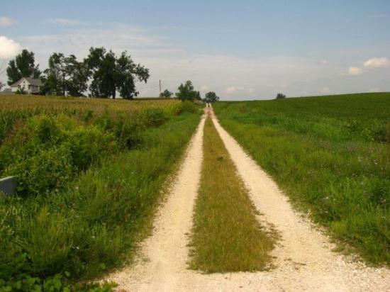 สปริงฟิลด์, อิลลินอยส์: our old country road
