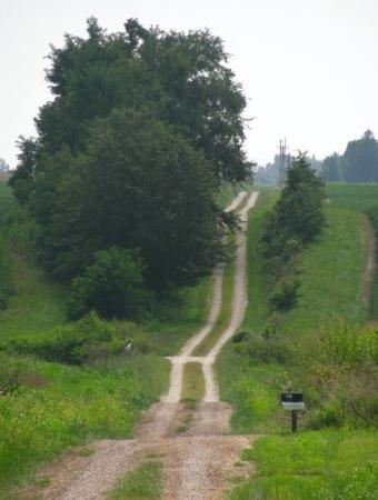 สปริงฟิลด์, อิลลินอยส์: Leavin' the farm.