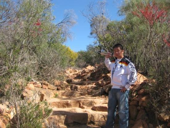 Kalbarri National Park ภาพถ่าย