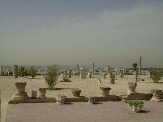 Karthago Picture Of Port El Kantaoui Sousse Governorate Tripadvisor