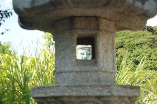 Foto de Kotokuin (Great Buddha of Kamakura)