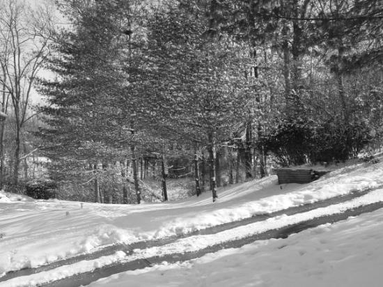 ซินซินนาติ, โอไฮโอ: Great snow of '09