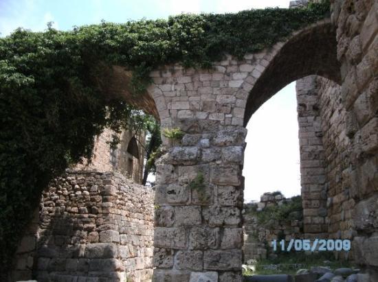 Fort atr Byblos