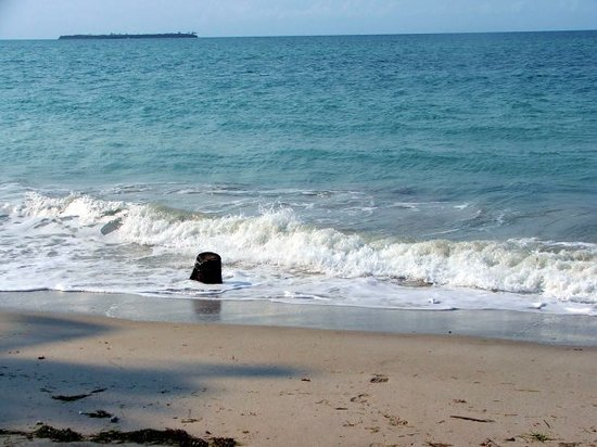 Dar es Salaam, Tanzanya: ...that's a tree stump, in case you were wondering. Oh, and swimming in the indian ocean was aw