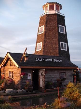โฮเมอร์, อลาสกา: The Salty Dawg Saloon,