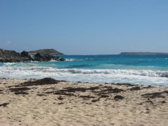 เซนต์มาร์ติน / ซินท์มาร์เทิน: La plage! (baie orientale)