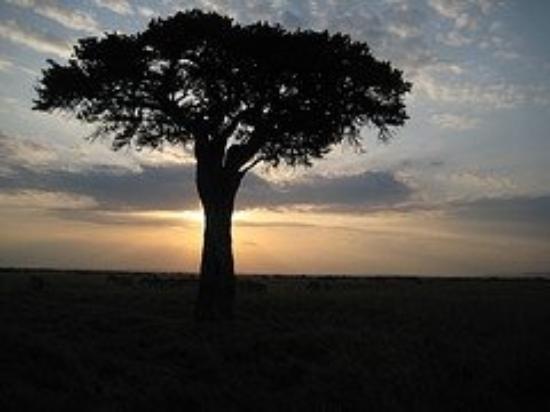 ไนโรบี, เคนยา: sunset in Kenya