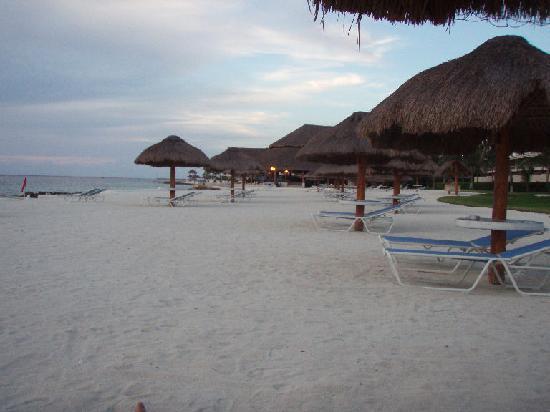 Presidente Inter-Continental Cozumel Resort & Spa: please bury me here