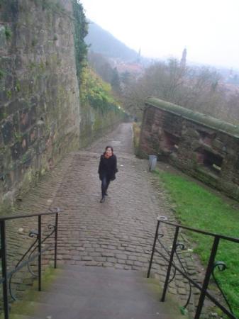ปราสาทไฮเดลเบิร์ก: Heidelberg