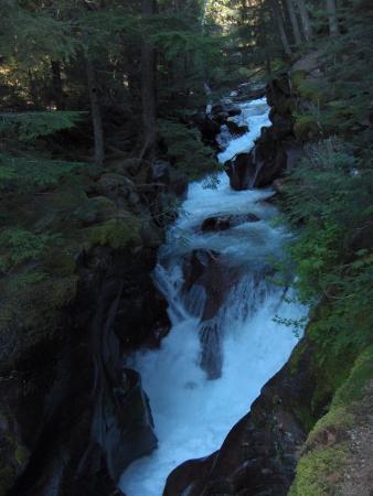 Glacier National Park ภาพถ่าย