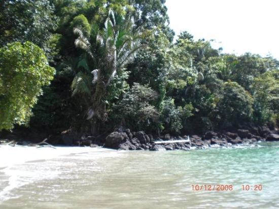 อุทยานแห่งชาติ Manuel Antonio National Park ภาพถ่าย