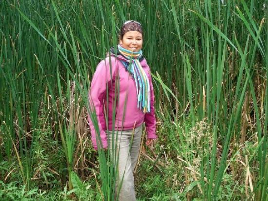 วินนิเพก, แคนาดา: une sortie pour l'école
