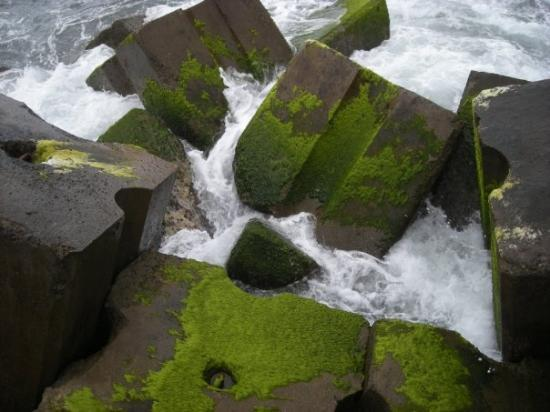Madeira ภาพถ่าย