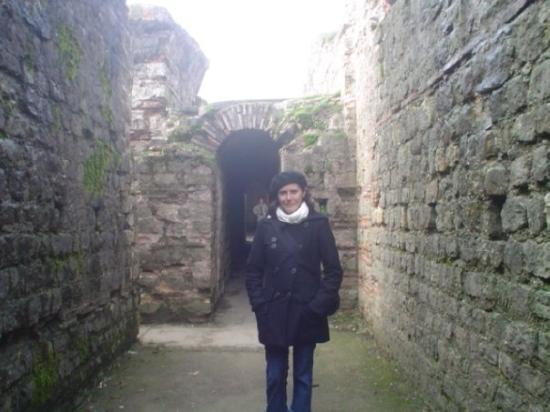 Kurfürstliches Palais: Trier