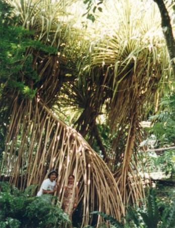 Parc des Mamelles, le Zoo de Guadeloupe Görüntüsü