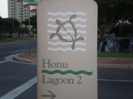 Marriott Ko Olina Beach Club: Honu (Sea Turtle) Lagoon...we got to snorkel with a wild sea turtle there :]