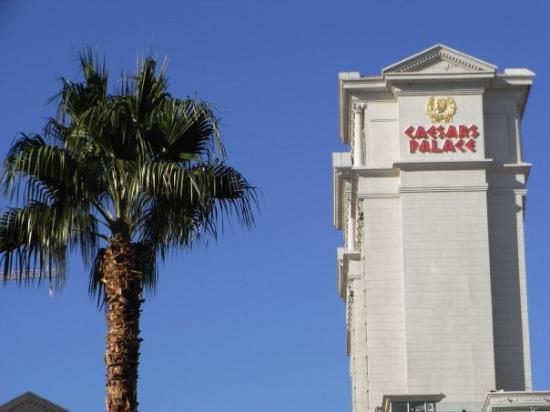 โรงแรมซีซาร์ พาเลส: 06/12 Las Vegas