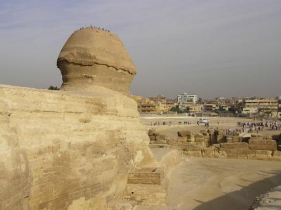 สฟิงซ์: And after all that beauty, this is the crap the Sphinx looks at.