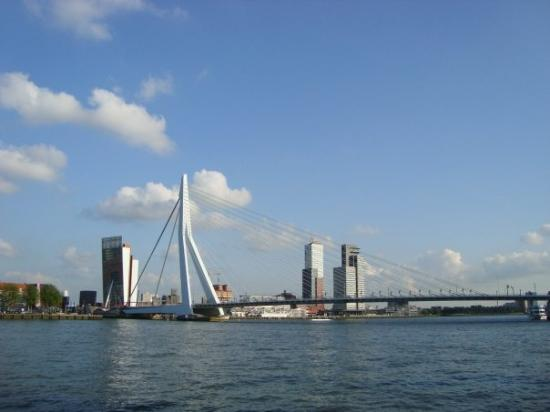 Erasmus Bridge ภาพถ่าย