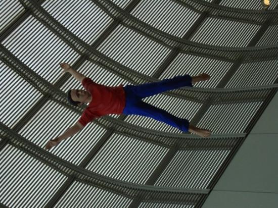 พิพิธภัณฑ์วิจิตรศิลป์: Flying body, Museum of Fine Arts