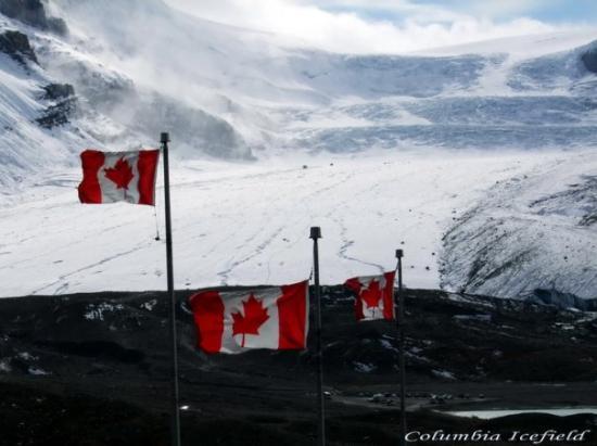 แจสเปอร์, แคนาดา: Jasper, Kanada -Columbia Icefield-