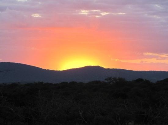 อุทยานแห่งชาติครูเกอร์, แอฟริกาใต้: Sunset dans la brousse
