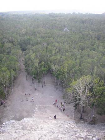 Sopra la piramide maya più alta del Messico a Coba!
