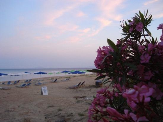 Skala beach in the evening