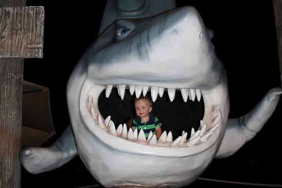 La Isla Shopping Village: Eli inside the shark's mouth at La Isla
