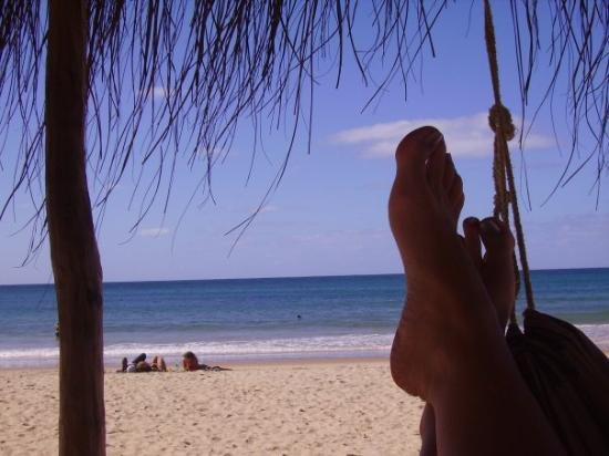 Barra Beach: View from the hammock