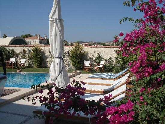 Sedirli Ev: The pool in the beautifully set garden.