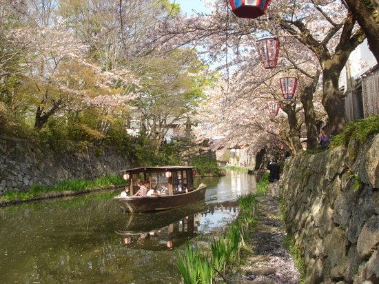 Omihachiman, Japan: 八幡掘