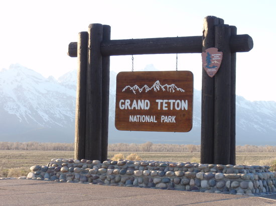 The Lexington at Jackson Hole : Visit in 3rd week of May - you will see lots of wildlife!