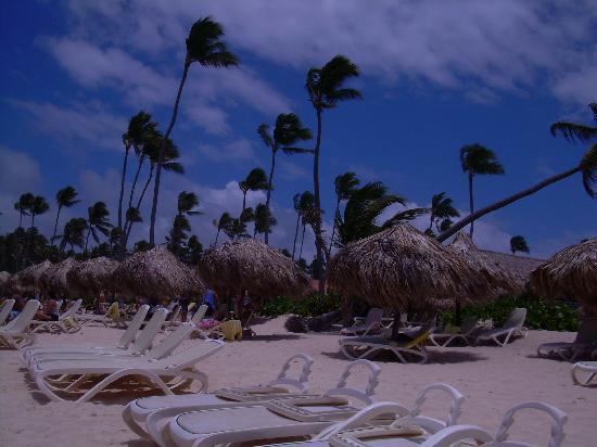 Majestic Elegance Punta Cana: BEACH AREA