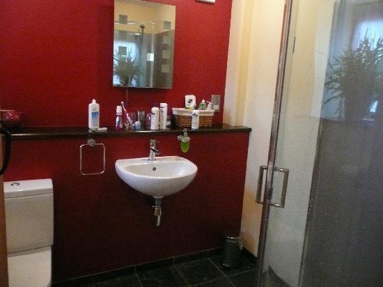Bloodstock Barn Bed and Breakfast: My bathroom