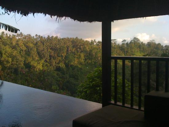 Hanging Gardens Of Bali: View From Our Outdoor Patio Hutch